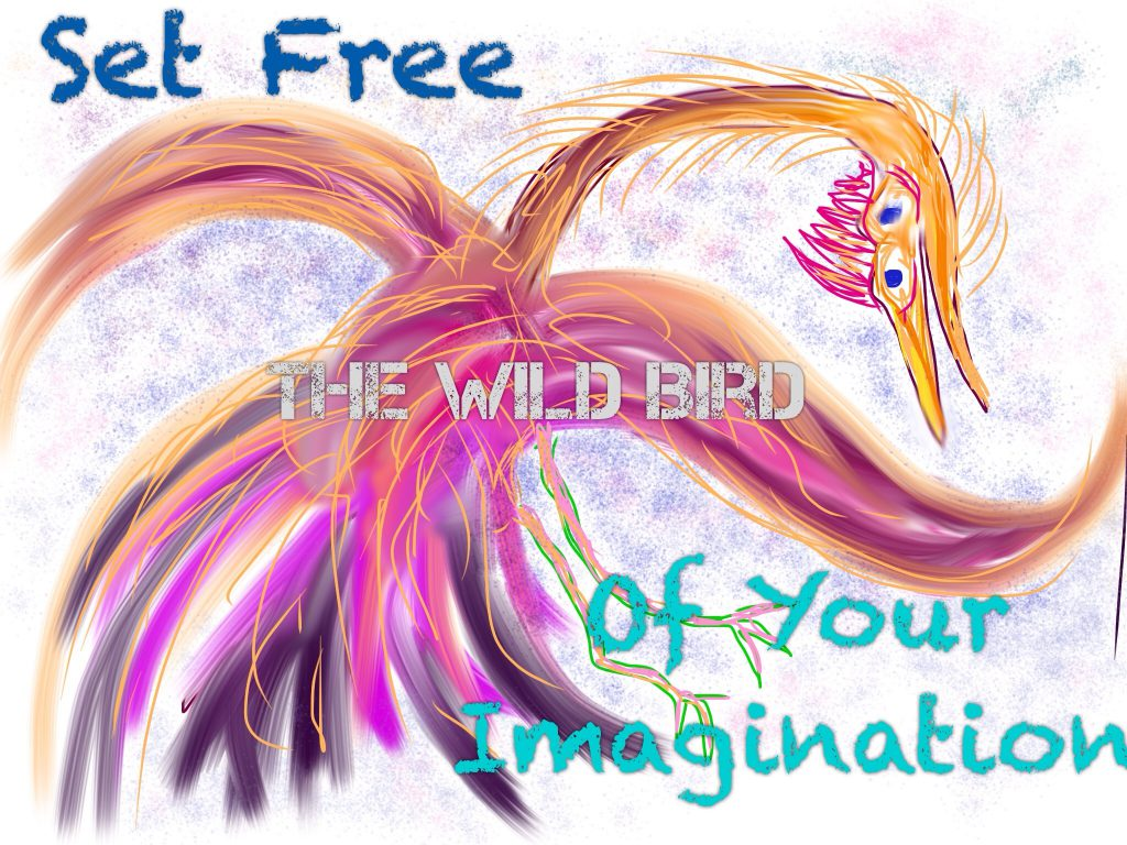 wildbirdofimagination