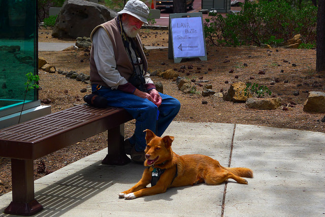 Charlie Johnston, the famous painter (Artist in residence at the Grand Canyon, for example) and Cash the Dog