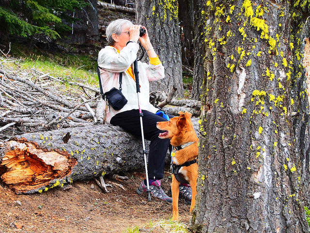 Elaine Rhode, Writer, and Cash doing some birding around Paulina Lake.