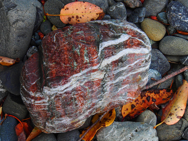 Chetco stripey rock with leaves