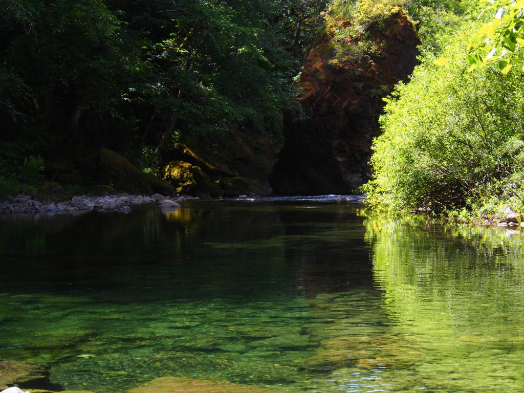 Green pools of the Chetco River