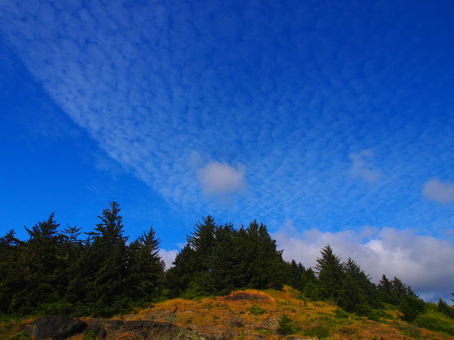 Little cloud in a mackerel sky at Ophir Beach. That scrim of cloud probably accounted for the weird light earlier.