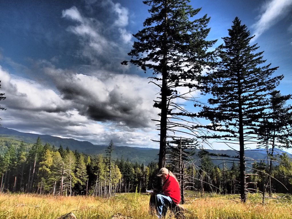 Peter Poet in Packer's Field on the road to Prairie Lookout high over the Chetco River.