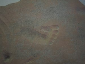 A 2000 year old imprint of a child's foot in clay.